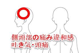 旅行先で頭痛や胸がムカムカする吐き気などの症状が出てから、不調が続いている。 もともと、外反母趾や頭痛、腰痛は慢性的な不調として感じていたが、ここまでひどく