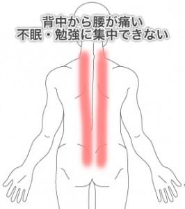 慢性腰痛の症例