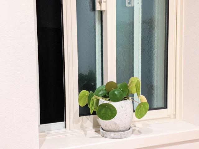 常に少し窓を開け換気。 (電気毛布やタオルなどで寒くならないように注意します)